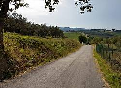 Passeggiata sulla Via di Castiglioni