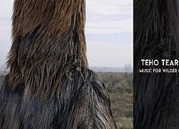 Teho Teardo: Music for Wilder Mann