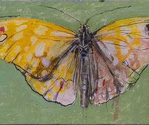 Evento Contemporaneamente: Butterfly Project a Casa Botticelli - Casa Botticelli