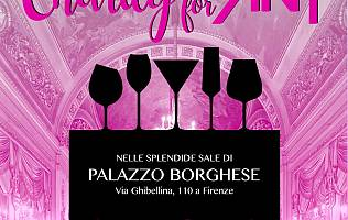 Charity For Ant: Shopping e Apericena solidale - Palazzo Borghese