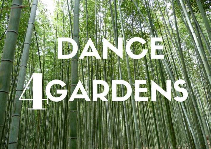 Evento Dance4Gardens, In between I hear your shadow - Palazzo Medici Riccardi