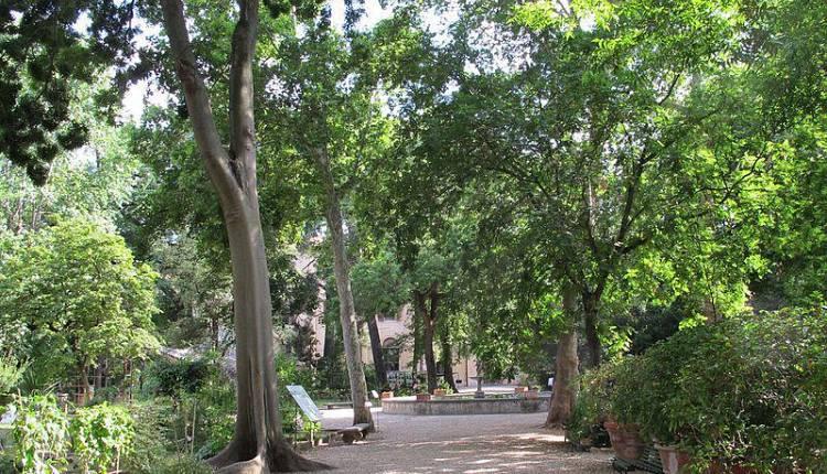 Visita all 39 orto botanico orto botanico giardino dei for Giardino orto botanico firenze