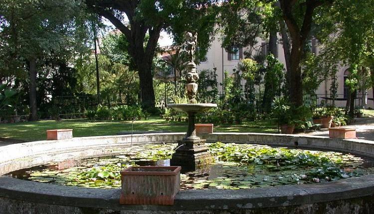 Alla scoperta del giardino dei semplici orto botanico for Giardino orto botanico firenze