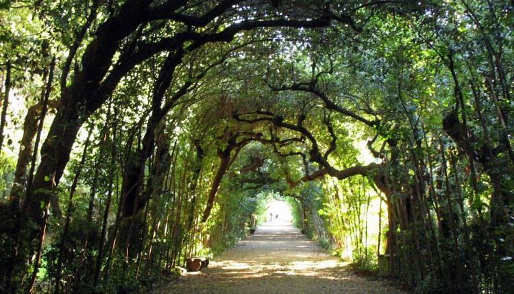 Boboli il giardino segreto di eleonora cancello di - Il giardino di ausonia ...